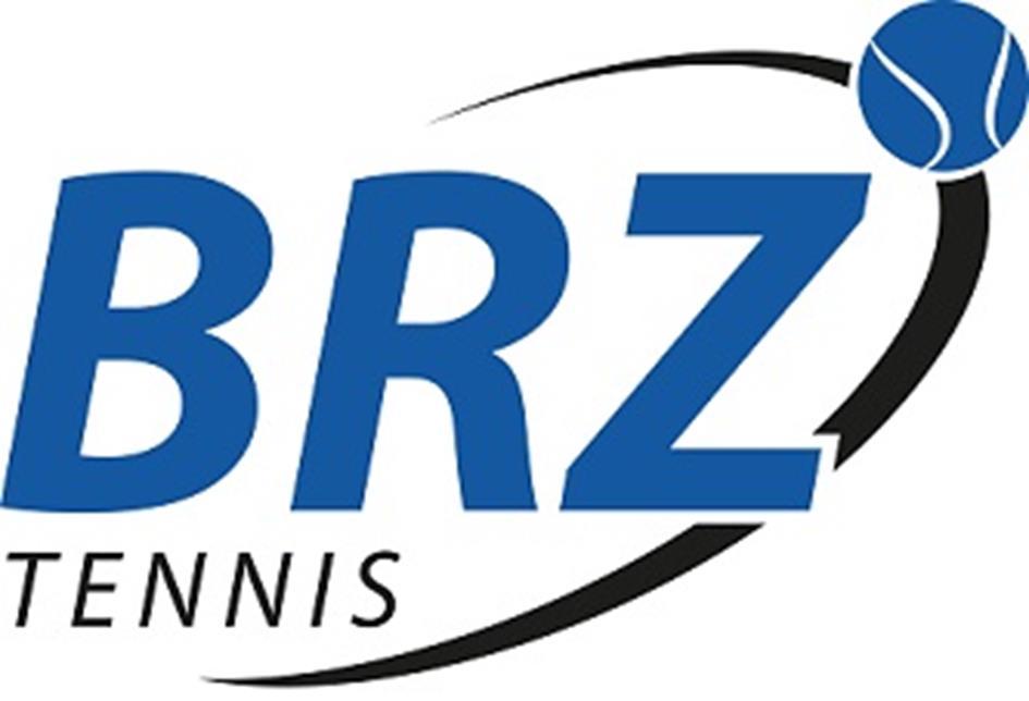 Brz-logo-HR-website.jpg